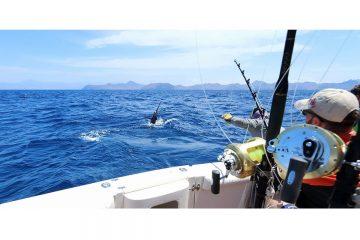 Морская рыбалка | 1 день