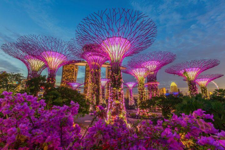 Соседние страны: Сингапур
